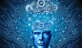 5 فئات رئيسية للمُنْتَجات الرقمية، وفوائدها المختلفة